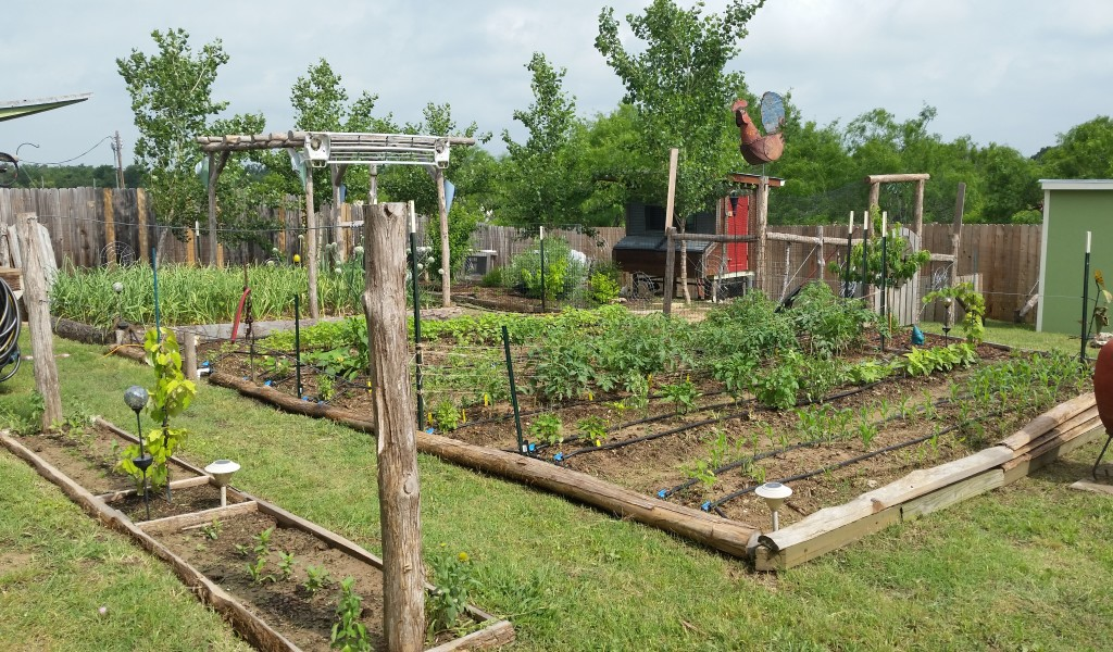 Sustainable Garden Bed | Late Bloom America